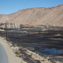 Wildfire Impact