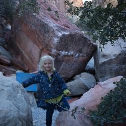 Black Velvet Canyon, Red Rocks, Nevada, USA
