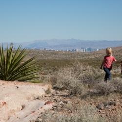View towards Las Vegas