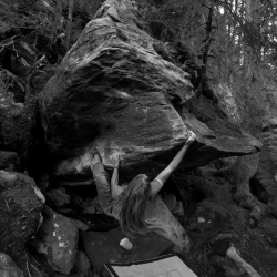 """""""Linser Boulder"""", fb7B"""